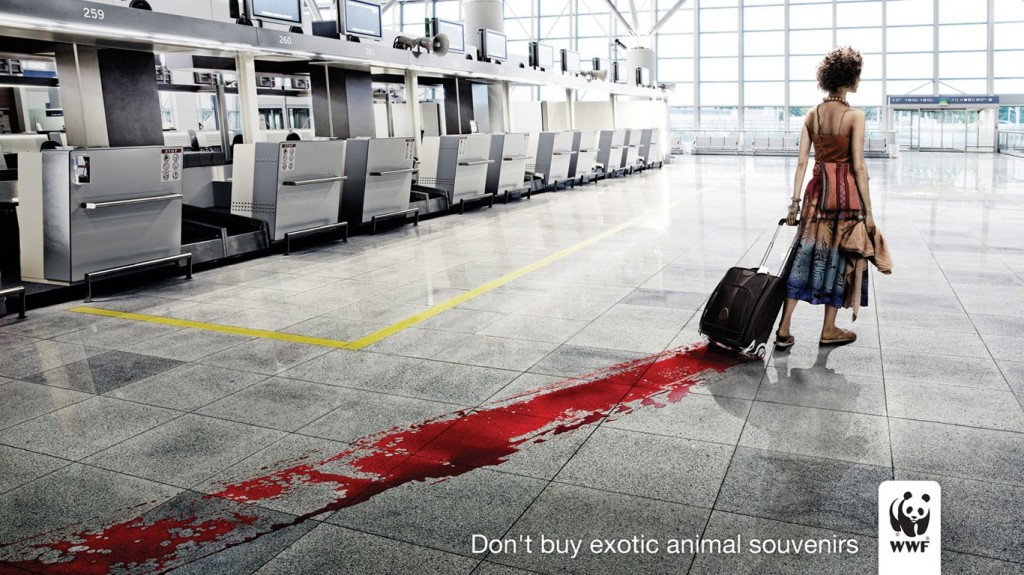 In this World Wildlife Fund ad against poaching for souvenirs, the stark red against gray, as well as the leading lines draw our eyes to the suitcase.