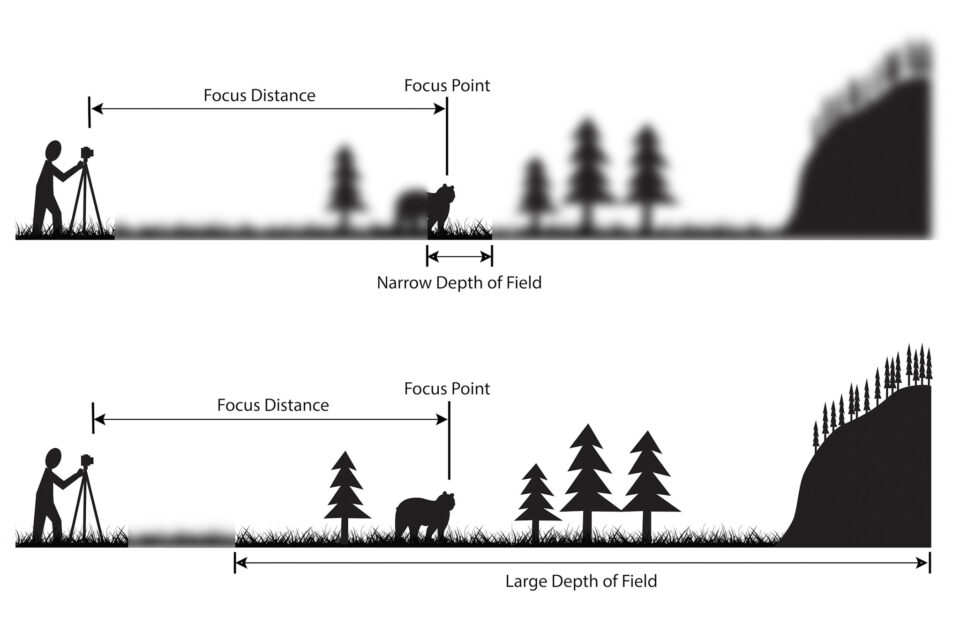 A graphic example of how depth of field works