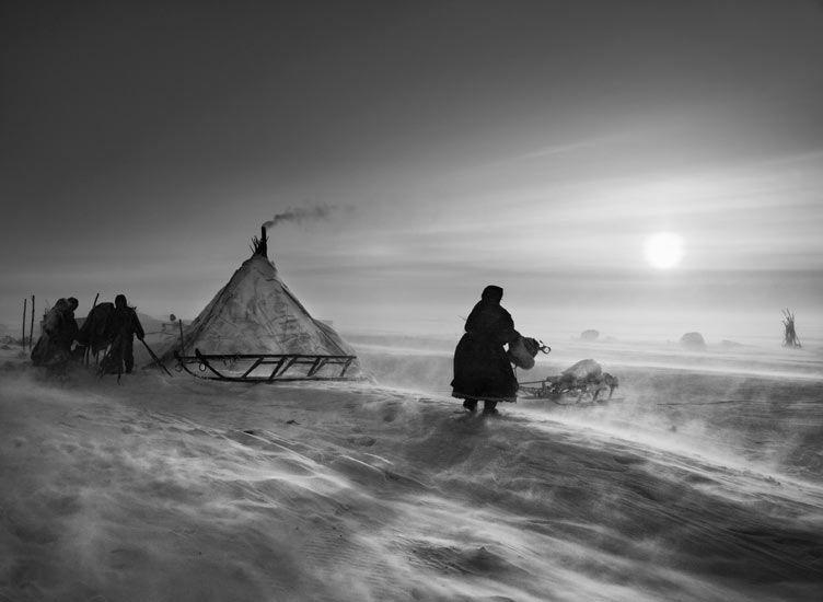 'North of the Ob River, about 100 kilometers inside the Yamal peninsula, Siberia' (2011) © Sebastião Salgado